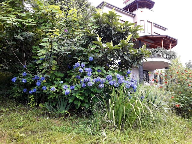 Berat House 2