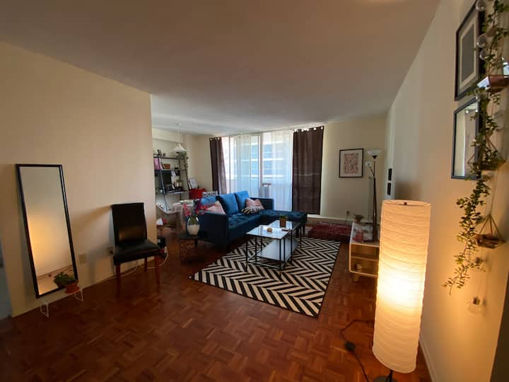 Artsy, spacious & homey apartment in downtown TO
