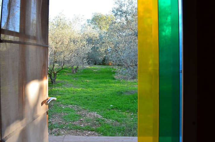 Vue sur le jardin depuis le chalet
