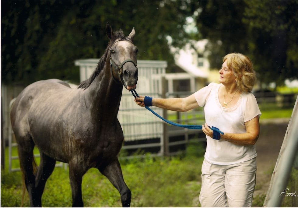 This is your hostess, Janet, working with a race horse