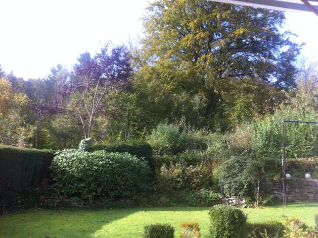 Wohnen im Grünen (Wald & Garten) - Wetter - Talo