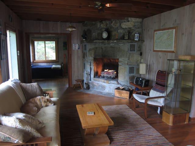 Darling cottage at Lake Hosea - Saluda - บ้าน