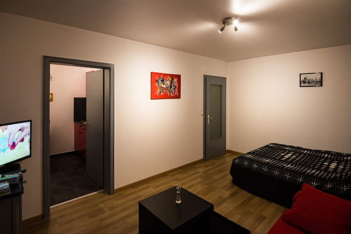 Nice flat,stone's throw from Basel - San Luis - Departamento