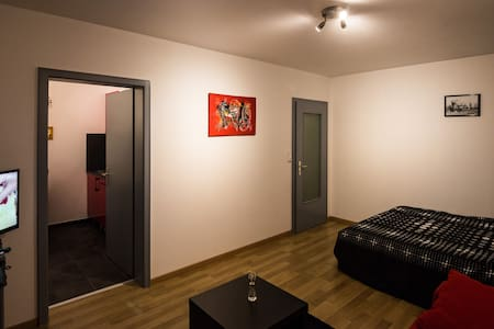 Nice flat,stone's throw from Basel - Saint-Louis