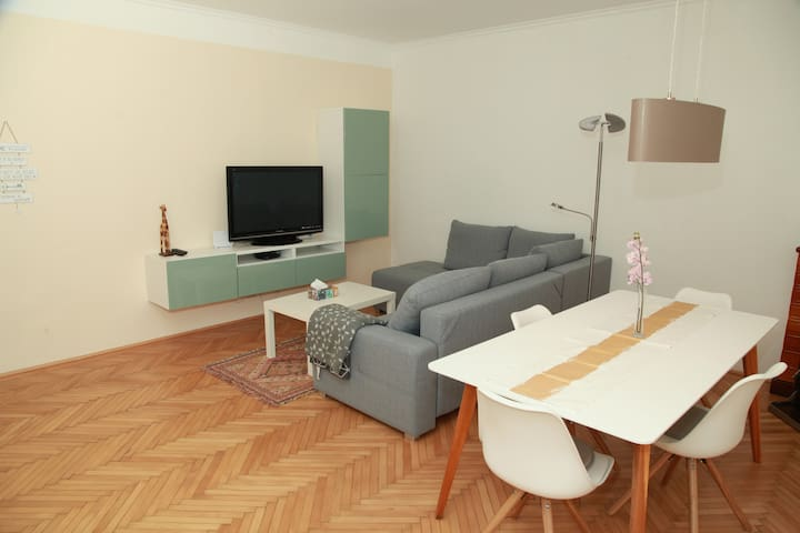 Central appartment at WU Wien (Netflix included)