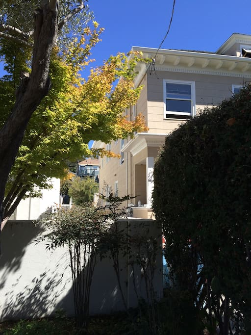 Sunny Furnished One Bedroom Apartm Apartments For Rent In Berkeley California United States
