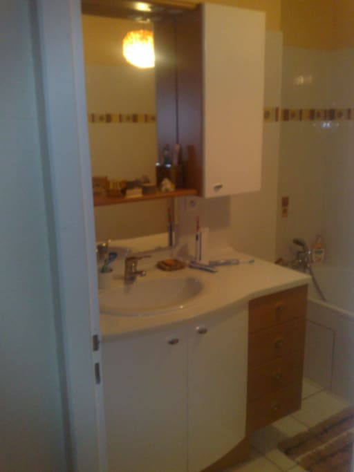 Private bathroom , shower and bath 180 cm