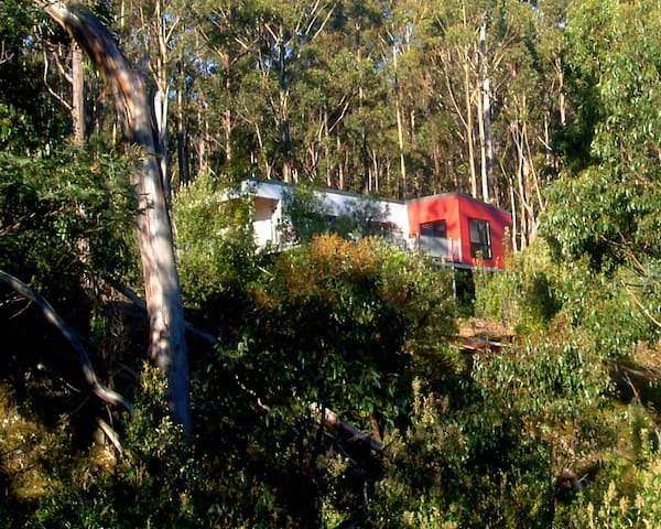 EcoRetreat 2 bedroom cabins - Huonville - House