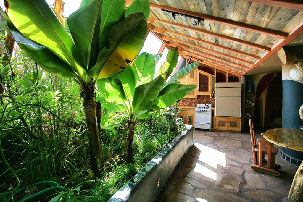 Earthship: Sweet Cinnamon Suite - Earth houses for Rent in