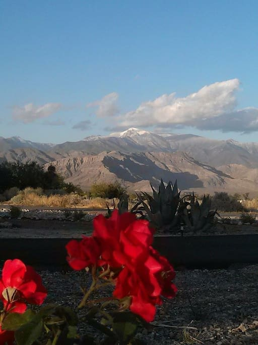 Bring your camera. This is your front view of the Nevada Spring Mountain Range. Early snow 2014.