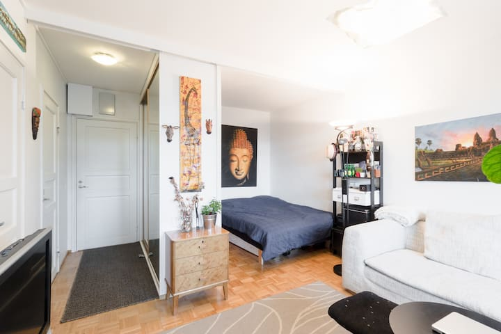 Studio apartment in the city center with balcony - Helsinki - Lejlighed