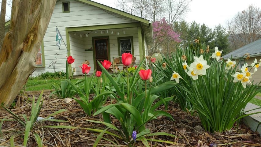 Asheville 1 Cozy Bungalow. Pets OK! 5 Min To Dwtn