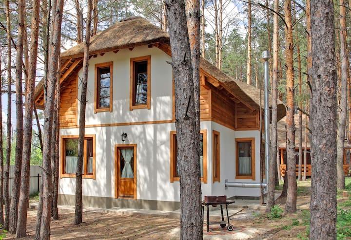 Getaway cabin near Kiev