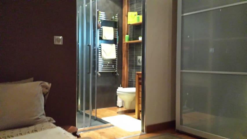 Grande Chambre double de 20 m2 avec douche - Écully - House