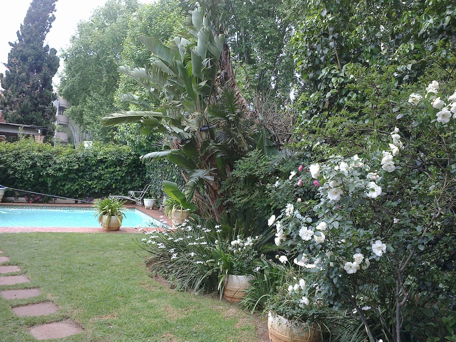 private and tranquil garden and pool