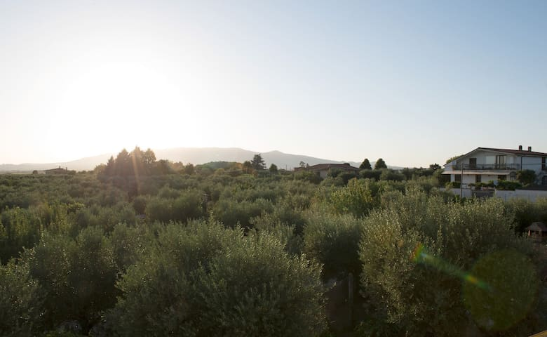B&B Nero Buono, your stay between nature and relax