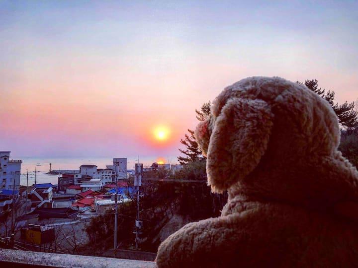 [70%할인]일출뷰 주문진 도깨비촬영지 BTS앨범사진 영진해변 레모나하우스