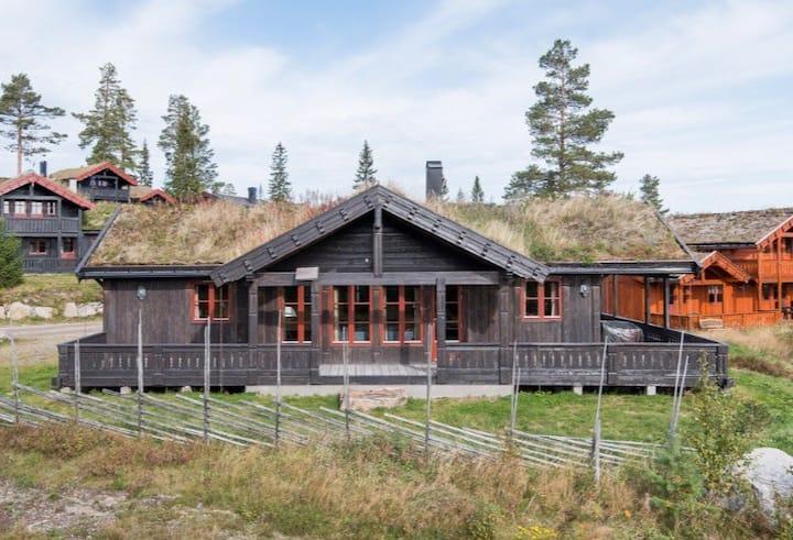 Orren cabin med ski inn and out