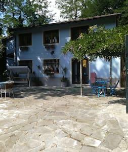 Appartamento nel Bosco A Borgo A Mozzano