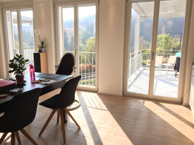 Beautiful Penthouse close airport. - Embrach - Wohnung