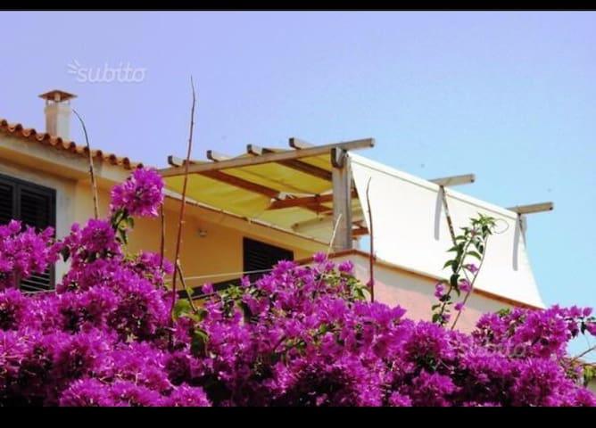 TRILOCALE luminoso - Santa Teresa Gallura - Appartement