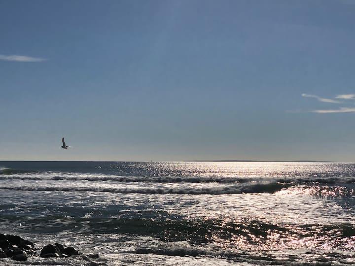 Seaside - On the beach, family friendly, views