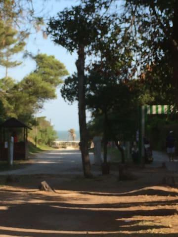 Alquilo MAR DEL PLATA ALFAR 2 AMB. 5 Personas - Mar del Plata - Apartment