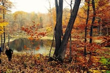 Our property with a small walking trail recently added, small pond and beautiful in the fall.