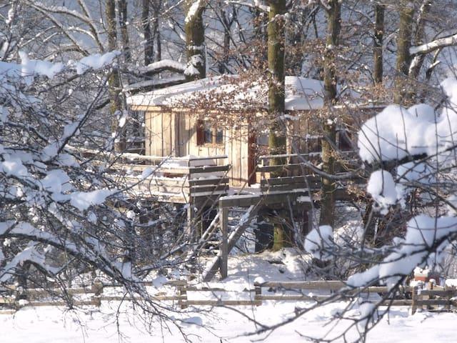 Nuit insolite dans une Cabane dans les arbres