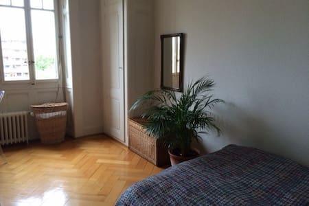 Lovely designer flat : 59m2 - Geneva