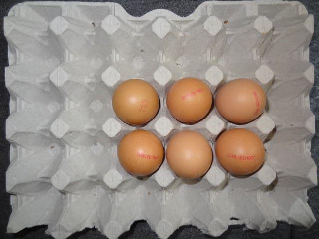vers eitje bij het ontbijt