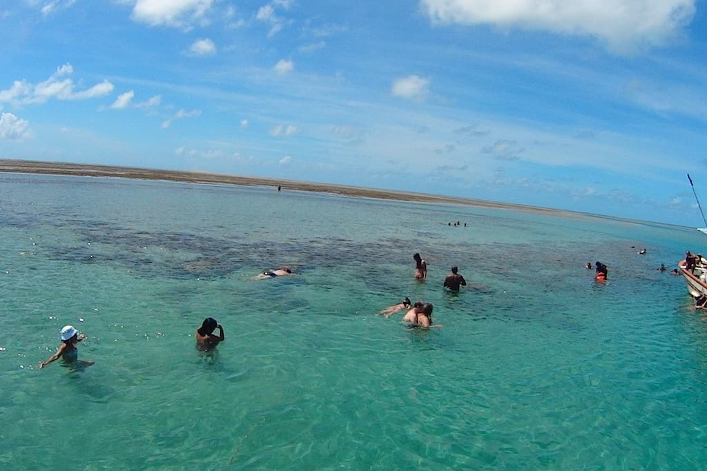 Snorkeling off-shore