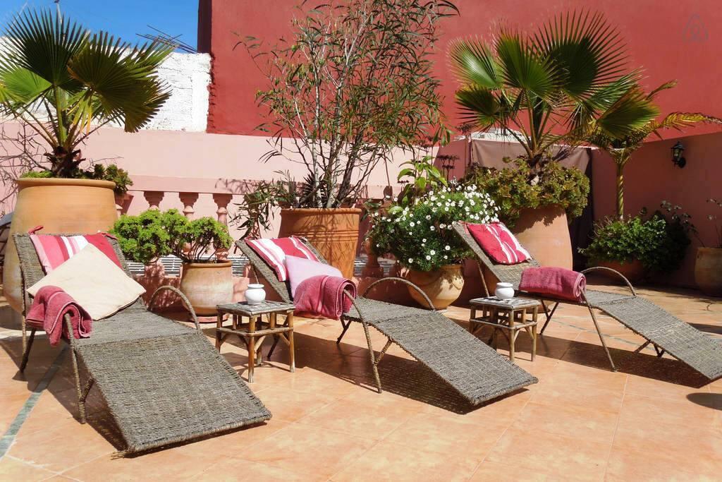 Terrace's Sunbath area