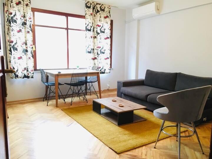 Central Apartment 1+1 in Kadıköy