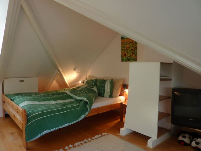Cosy and  complete room in Peize - Peize - Casa