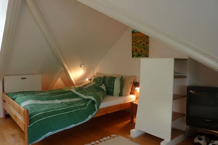 Cosy and  complete room in Peize - Ház