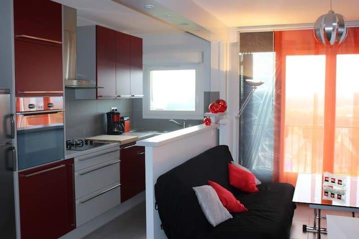 Bel appartement vue sur Loire
