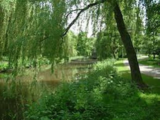 Room is opposite walking path and park and next to Dommel river.