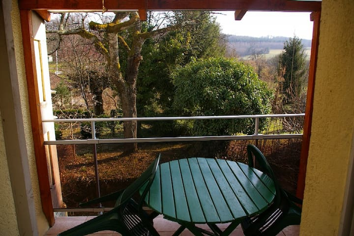 Bel appartement pres cure thermale - Saint-Honoré-les-Bains - Appartement