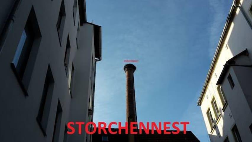 Stork`s nest