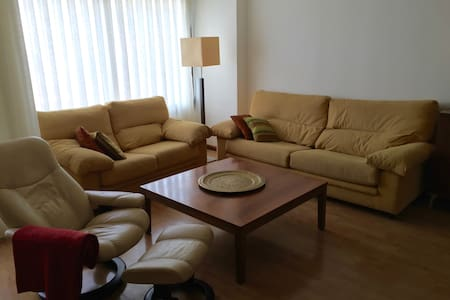 big  appart. 3 rooms +parking  climatised