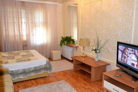 Уютная квартира в Бресте - Брест