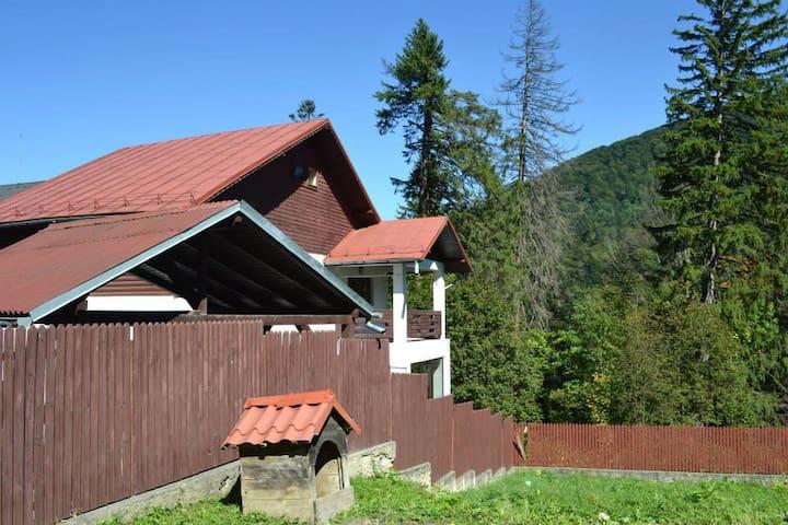 Cozy cottage in chic resort