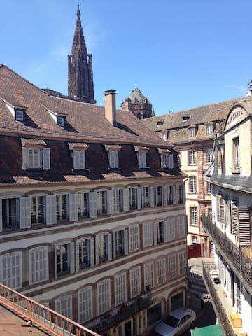 grande chambre priv e proche cath drale apartments for rent in strasbourg alsace france. Black Bedroom Furniture Sets. Home Design Ideas