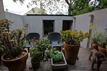 Private, shared courtyard surrounded by lush trees and all day sunshine