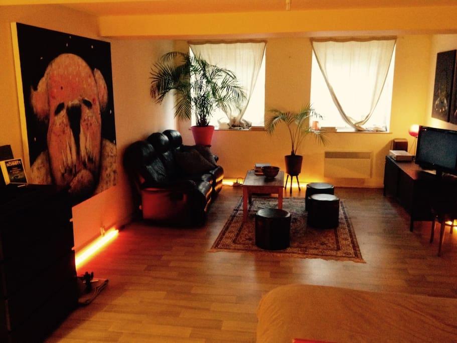 studio d 39 artiste vieux lille appartements louer lille nord pas de calais france. Black Bedroom Furniture Sets. Home Design Ideas