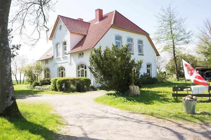 Ferienwohnung, Garten mit Badeteich
