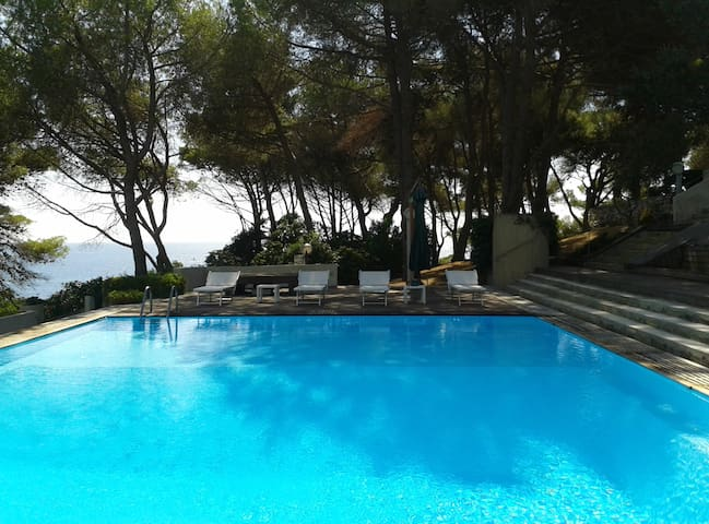 Camera Ambra/con piscina/Isola d'Elba - Province of Livorno - Bed & Breakfast