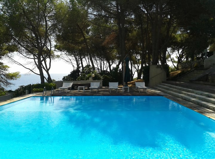 Camera Ambra/con piscina/Isola d'Elba