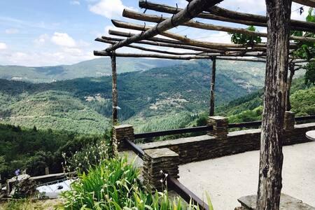 Location Petite maison de Vacances